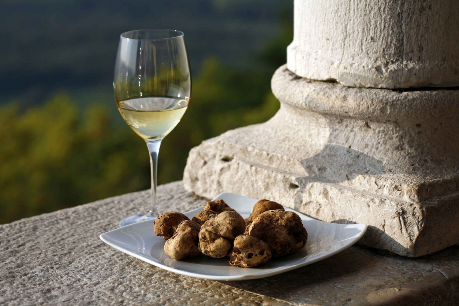Flavours of Istria Tasting Experience From Koper