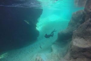 From Bovec: Soča Gorge Snorkeling