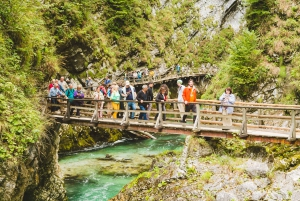 From Ljubljana: Day Trip to Bled and Vintgar Gorge