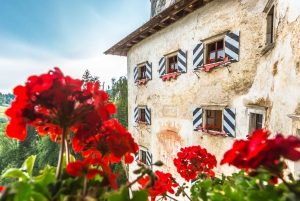 From Ljubljana: Postojna Cave and Lake Bled Group Day Trip
