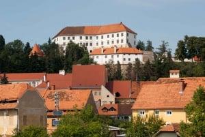 From Ljubljana: Private Tour to Maribor, Ptuj & Vineyards