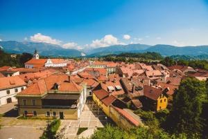 Kamnik and Velika planina: Private Trip from Ljubljana