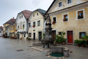 Lake Bled and medieval town of Radovljica with lunch