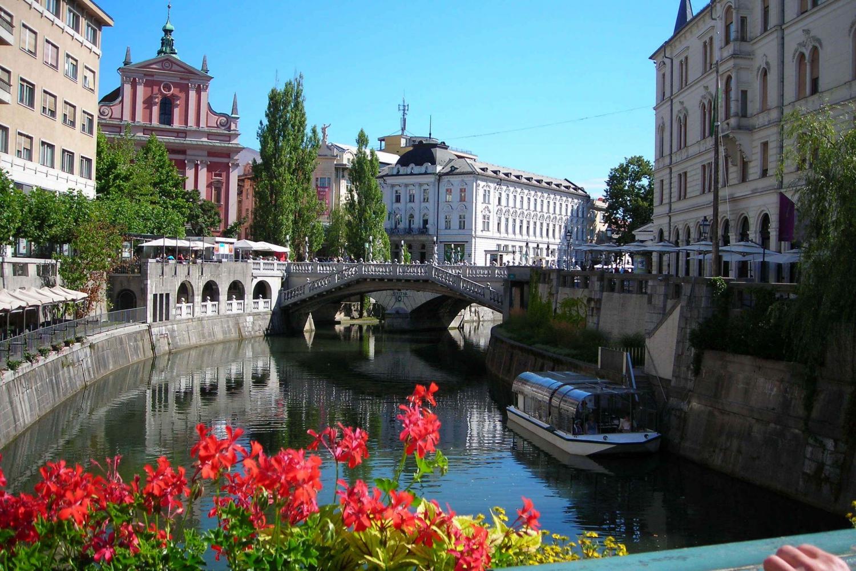 Ljubljana: Full–Day Bus Tour from Trieste