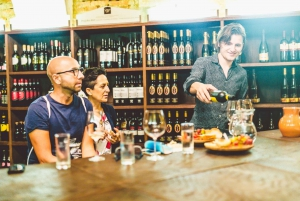 Maribor and Ptuj: Private Trip with Wine