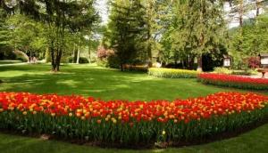 Mozirski gaj - Flower Park