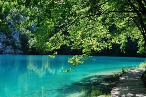 Plitvice National Park: Private Trip from Ljubljana
