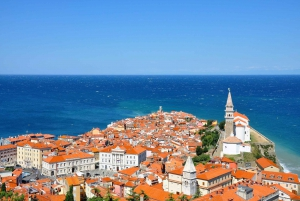 Private Tour of Lipica and the Coastal City of Piran