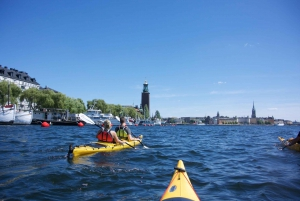 2-Hour Guided Kayak City Tour & Optional Dinner