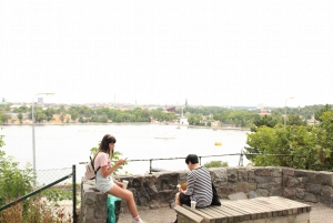 Bohemian Stockholm: Södermalm Island Walking Tour