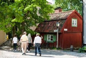 Delightful Djurgården Private Walking Tour