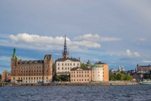 Drottningholm Palace Cruise from Stockholm
