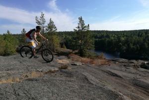 Forest Mountain Biking Adventure