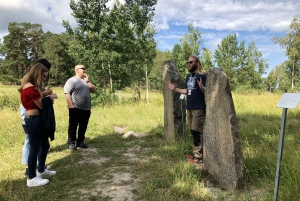 From Full Day Small Group Viking Culture Tour