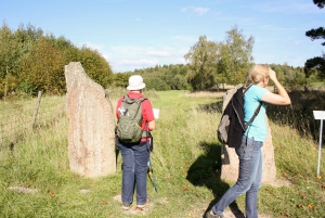 From Stockholm: Full Day Small Group Viking Culture Tour