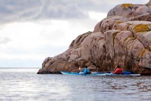 Full–Day Kayaking Adventure