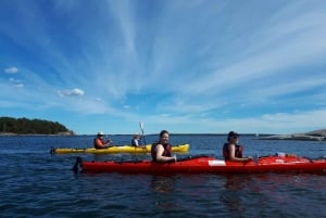 Stockholm: 1 or 2-Day Kayaking Tour in the Archipelago