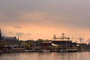 Stockholm: 2-Hour Djurgården Sightseeing Tour