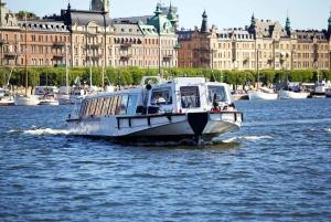 Stockholm: 2-Hour Under the Bridges Boat Tour