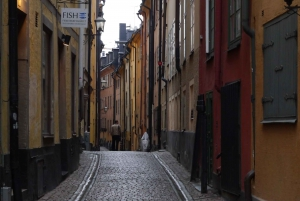 Stockholm: 3-Hour City Tour with Live Guide