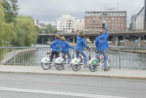 Stockholm 3-Hour Private Guided Bike Tour