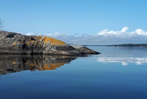 Stockholm Archipelago 1-Hour Tour by RIB Speed Boat