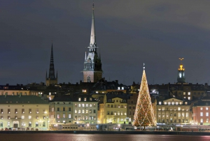 Stockholm: Christmas Private Walking Tour