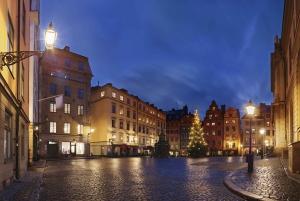 Stockholm: Christmas Spirit Walking Tour