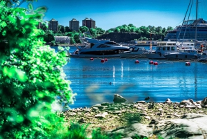 Stockholm: Delightful Djurgården Private Walking Tour