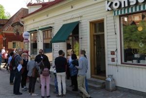 Stockholm: Family-Friendly Skansen Guided Tour