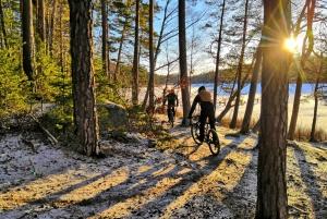 Stockholm: Forest Mountain Biking Adventure
