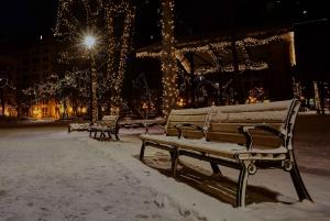 Stockholm: Magical Christmas Tour