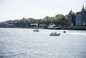 Stockholm: Old Town, Djurgården Island & Vasa Museum