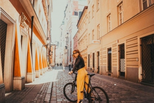 Stockholm: Top Highlights Bike Tour