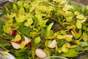 Stockholm Vegetarian, Vegan, and Raw Food Tour