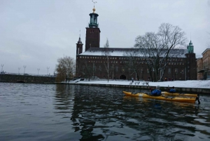 Stockholm: Winter Kayaking Tour with Lunch