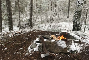 Stockholm: Winter Nature Hike with Campfire Lunch