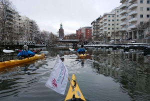 Winter Kayaking Tour with Lunch
