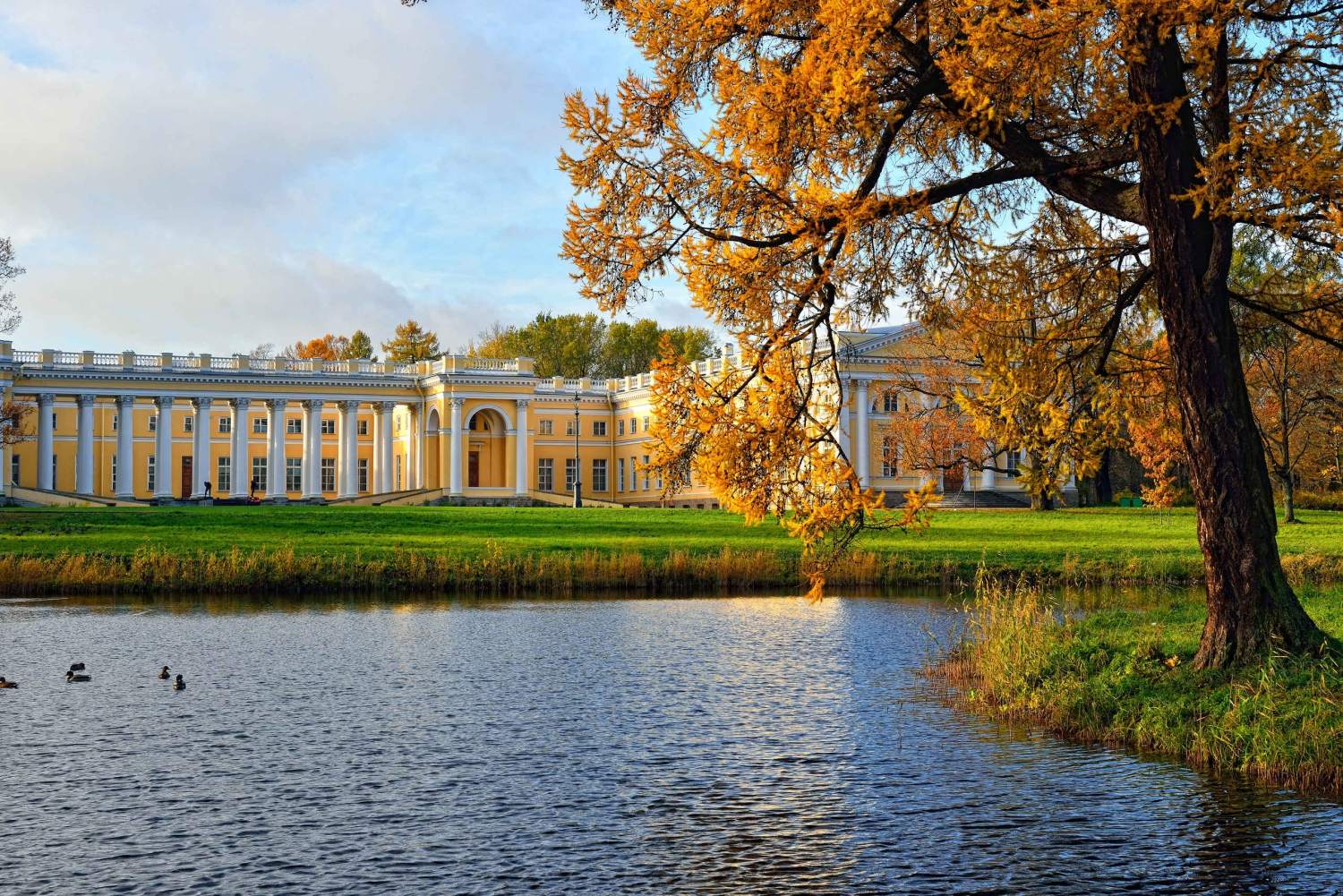 6-Hour Imperial Residences Tour: Pushkin & Pavlovsk by Car