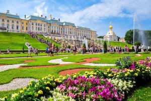Peterhof Palace and Parks: Private Tour with Hotel Pickup