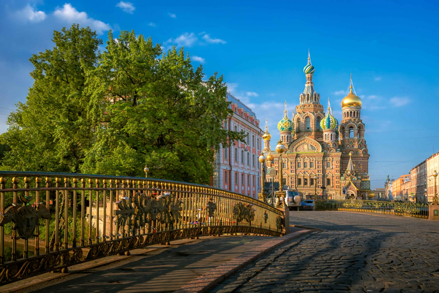 St. Petersburg: City Sightseeing Visa-Free Shore Tour