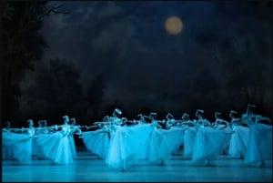 St. Petersburg Mariinsky Ballet Reserved Ticket