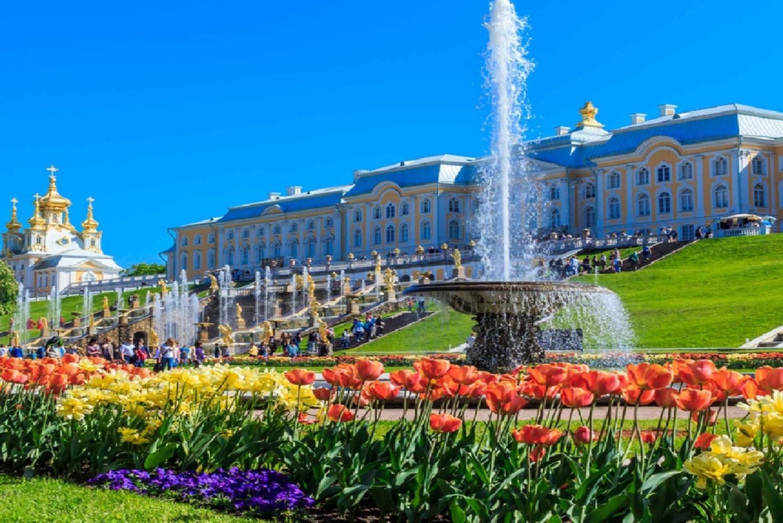 St Petersburg's: Peterhof Grand Palace and Gardens Tour