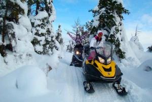 St. Petersburg: Snowmobile Forest Safari Adventure