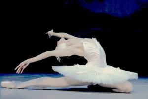 St. Petersburg: Swan Lake Ballet Admission Ticket
