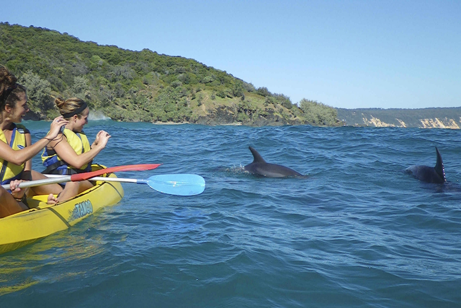 Rainbow Beach: Kayaking with Dolphins and Beach Tour