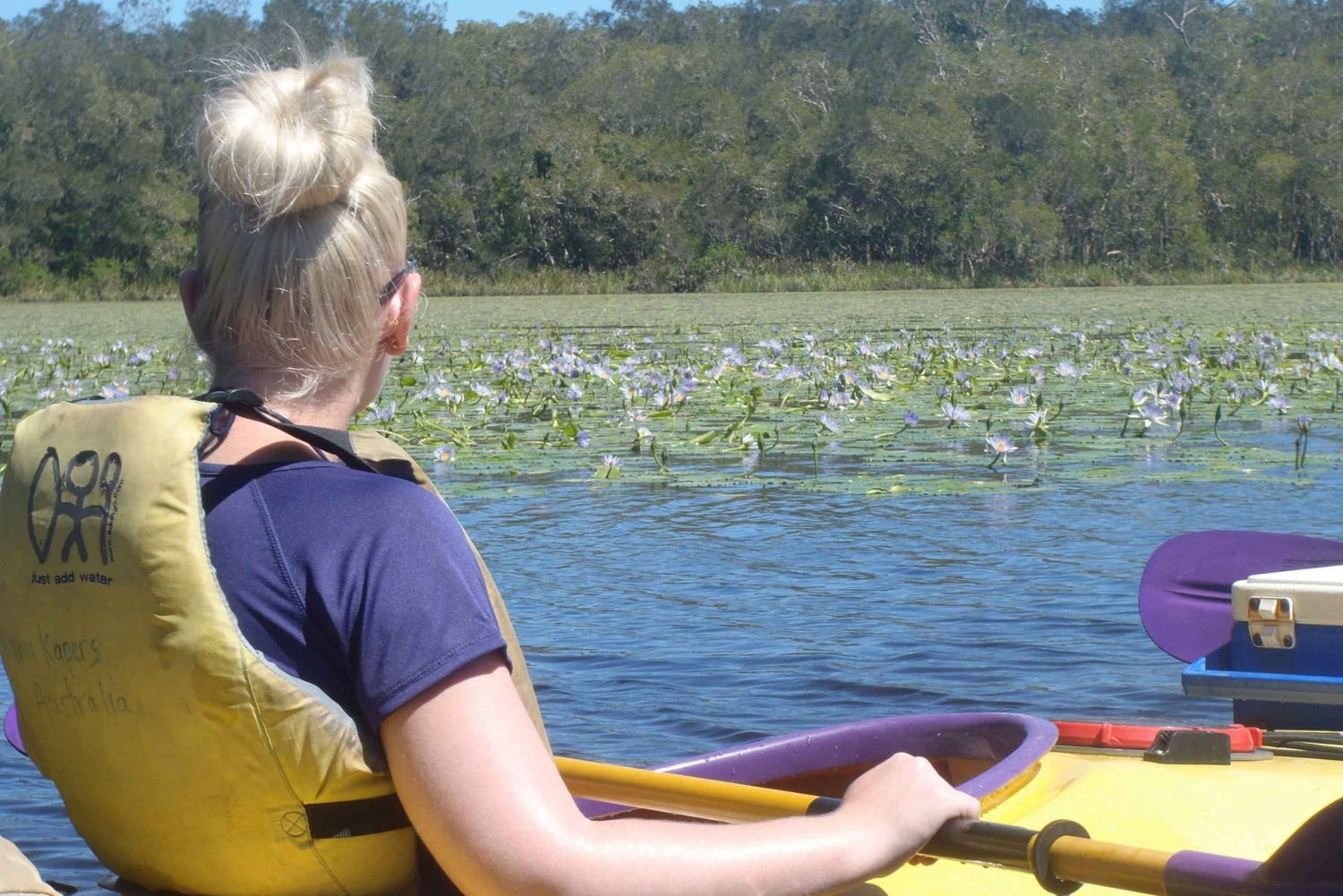 Self-Guided Noosa Everglades Kayak Trip