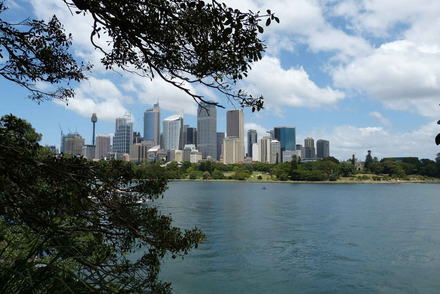 Private Customizable Sydney Tour With a Local