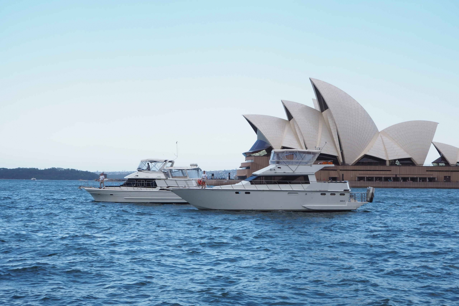 Sydney Harbour: 2-Hour Morning Yacht Cruise with Morning Tea