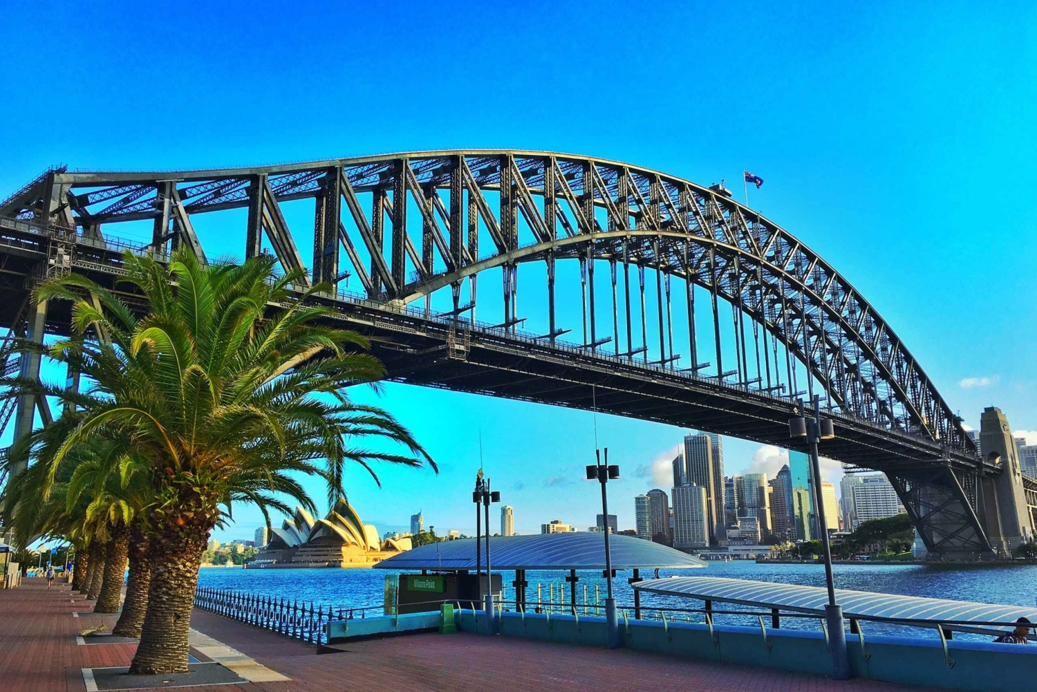Sydney Welcome Tour: Private Tour with a Local